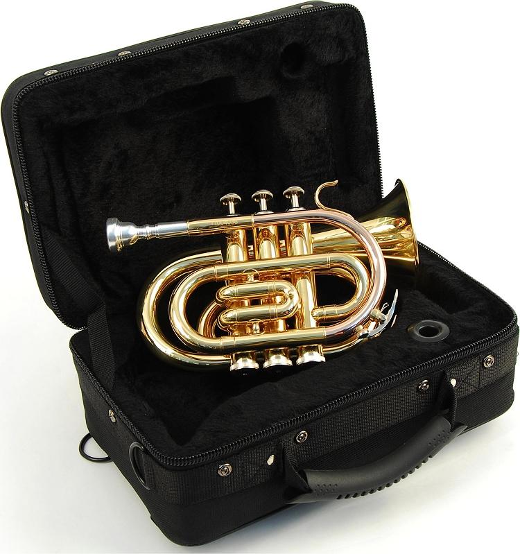 red rock taschen trompete bb lack gold koffer mundst ck ebay. Black Bedroom Furniture Sets. Home Design Ideas